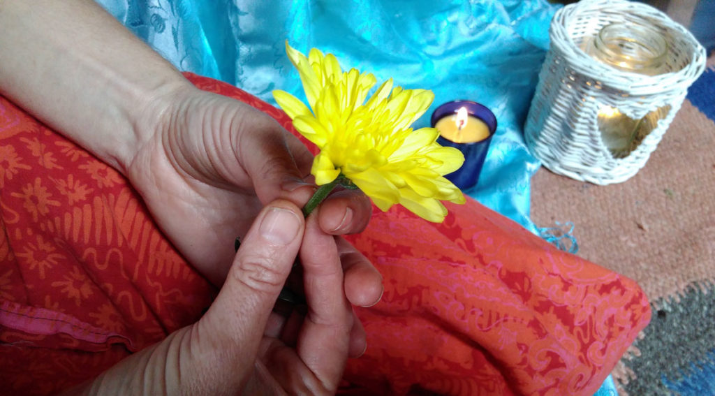 hand holding a yellow flower