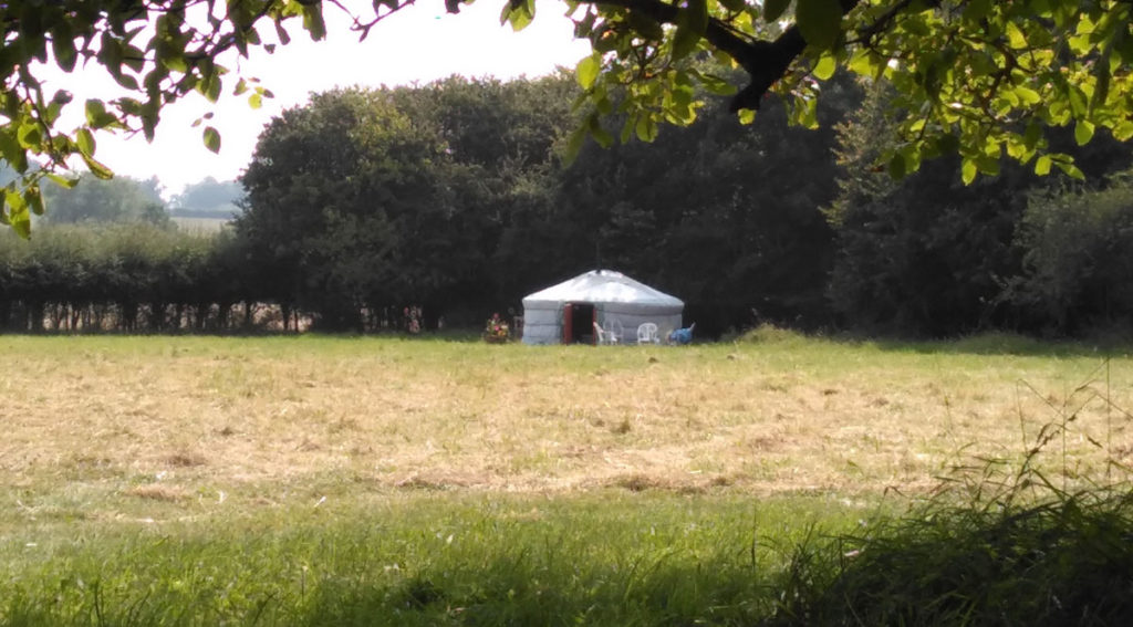 yurt in a field